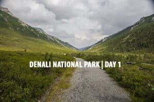Denali National Park | Day One