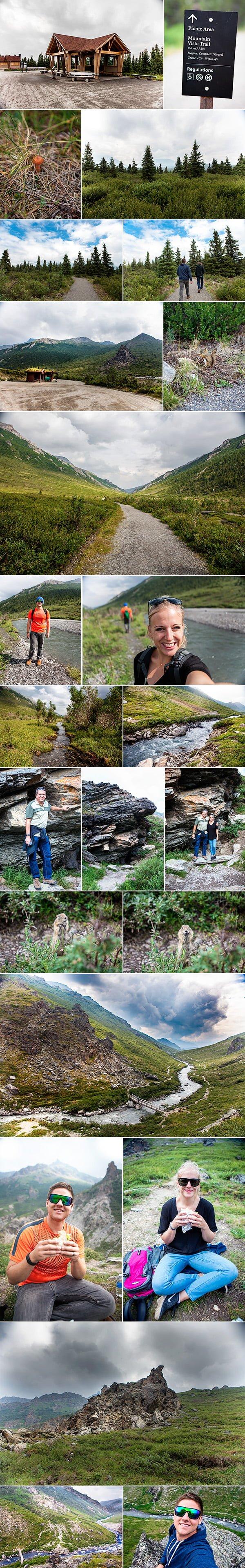Denali National Park 01